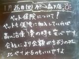 2010/01/26森下
