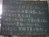 081007南行徳
