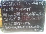 2010/6/6森下