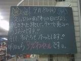 2010/9/8南行徳