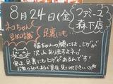 2012/8/24森下