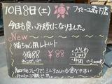 2011/10/08森下