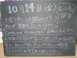 2011/10/14松江
