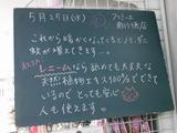 2011/5/25南行徳