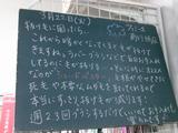 2011/03/22南行徳