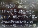 2010/11/24森下