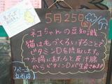 2012/5/25立石