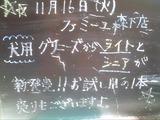 2010/11/16森下