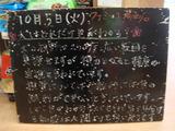 2010/10/05葛西