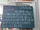 2010/12/24南行徳