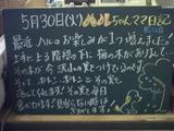 060530松江