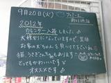 2011/9/20南行徳