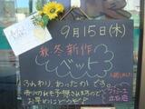 2011/9/15立石