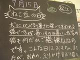 2011/7/15松江