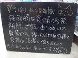 2010/07/09松江