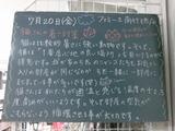 2012/7/20南行徳