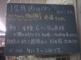 091215南行徳
