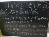 081114松江