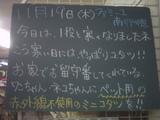 091119南行徳