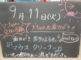 2012/9/11森下
