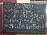 060829南行徳