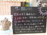 080720松江