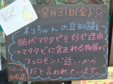 2012/8/31立石