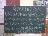070916南行徳