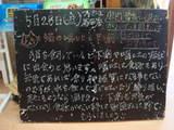 2010/05/28葛西