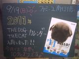 2010/9/19南行徳