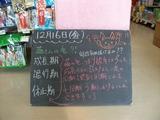2012/12/16森下