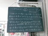 2011/11/9南行徳