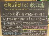 2011/6/28松江