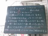 2011/11/16南行徳