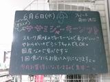 2012/6/6南行徳