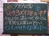050909南行徳