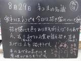 080829松江
