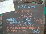 2012/6/21立石