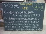 2010/04/20南行徳