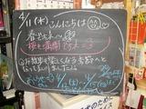 2012/4/11森下