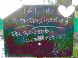 2011/1/6立石