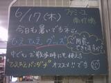 2010/6/17南行徳