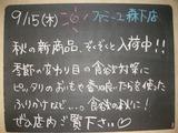 2011/9/15森下