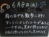 2011/6/8森下