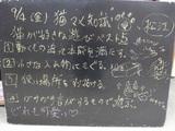 090904松江