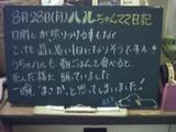 060828松江