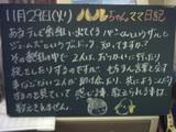 051129松江