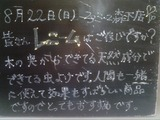 2010/8/22森下