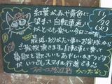 051122松江