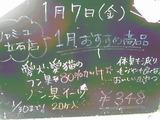 2011/01/07立石